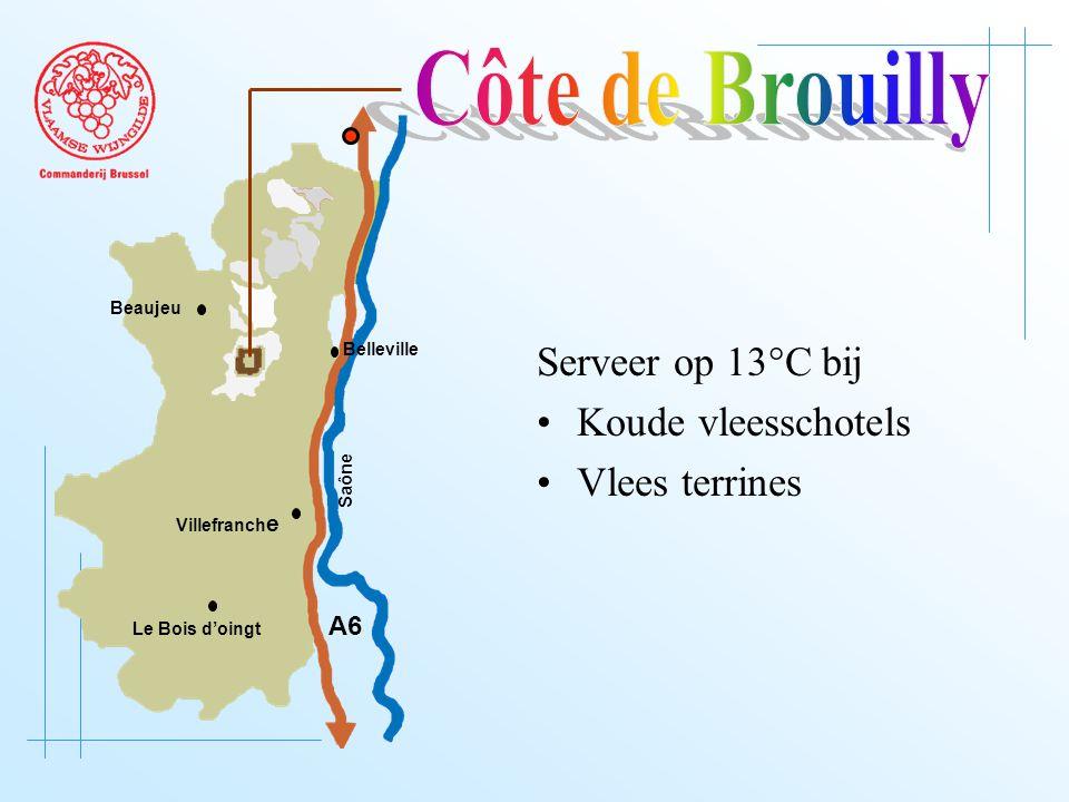 A6 Saône Belleville Le Bois d'oingt Villefranch e Beaujeu Serveer op 13°C bij Koude vleesschotels Vlees terrines