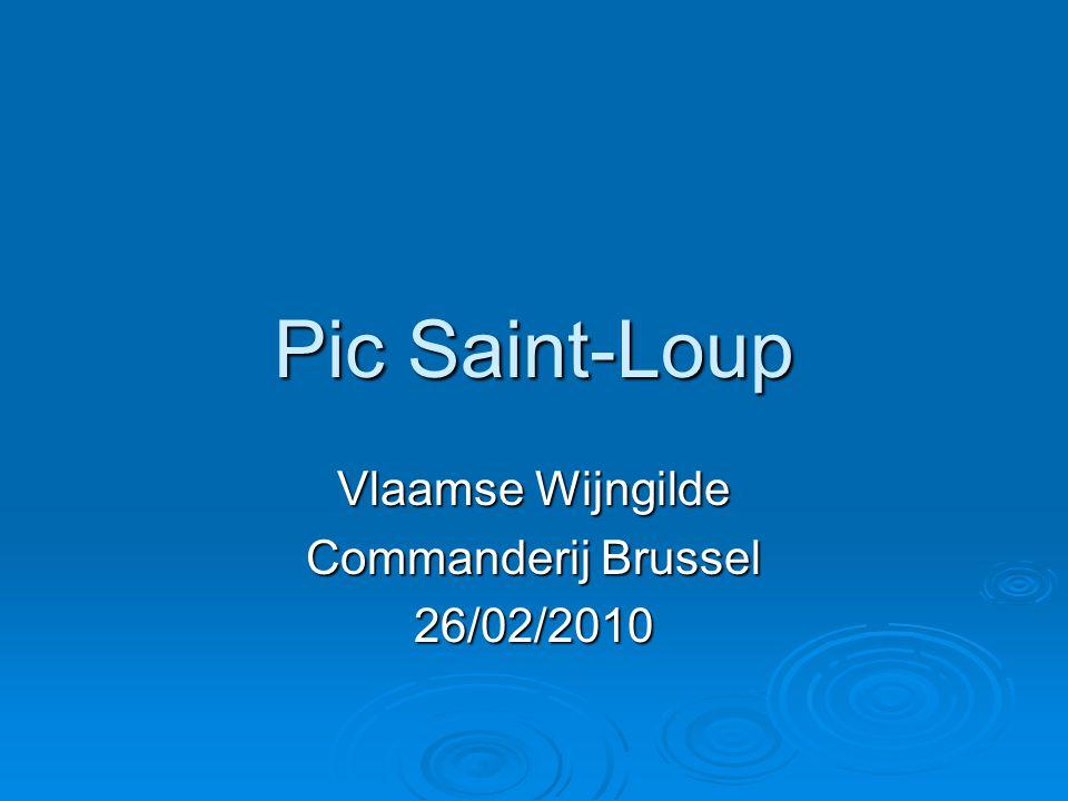 Pic Saint-Loup Vlaamse Wijngilde Commanderij Brussel 26/02/2010