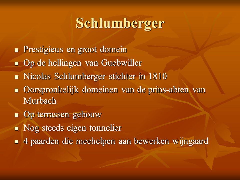 Schlumberger Prestigieus en groot domein Prestigieus en groot domein Op de hellingen van Guebwiller Op de hellingen van Guebwiller Nicolas Schlumberge