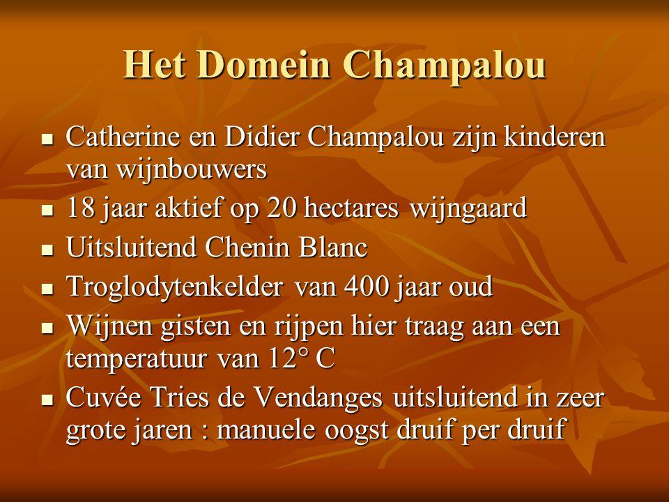 Het Domein Champalou Catherine en Didier Champalou zijn kinderen van wijnbouwers Catherine en Didier Champalou zijn kinderen van wijnbouwers 18 jaar a