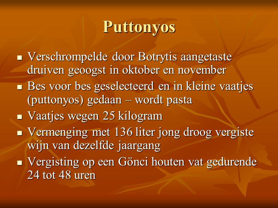 Puttonyos Verschrompelde door Botrytis aangetaste druiven geoogst in oktober en november Verschrompelde door Botrytis aangetaste druiven geoogst in ok