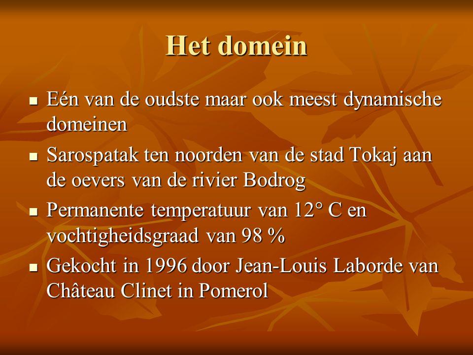 Het domein Eén van de oudste maar ook meest dynamische domeinen Eén van de oudste maar ook meest dynamische domeinen Sarospatak ten noorden van de sta