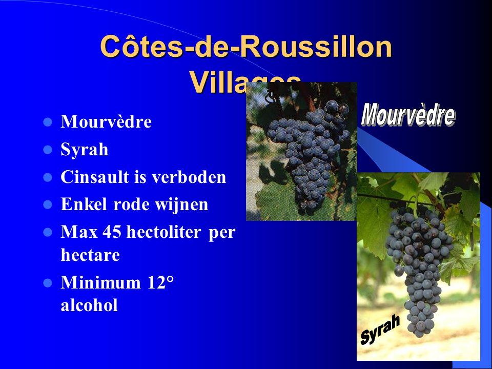 Côtes-de-Roussillon Villages Mourvèdre Syrah Cinsault is verboden Enkel rode wijnen Max 45 hectoliter per hectare Minimum 12° alcohol
