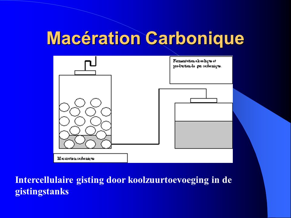 Macération Carbonique Intercellulaire gisting door koolzuurtoevoeging in de gistingstanks