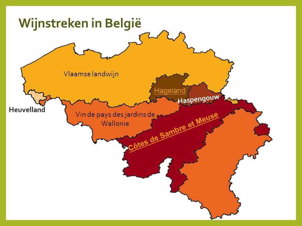 Côtes de Sambre et Meuse Hageland Haspengouw Heuvelland Vin de pays des jardins de Wallonie Vlaamse landwijn Wijnstreken in België