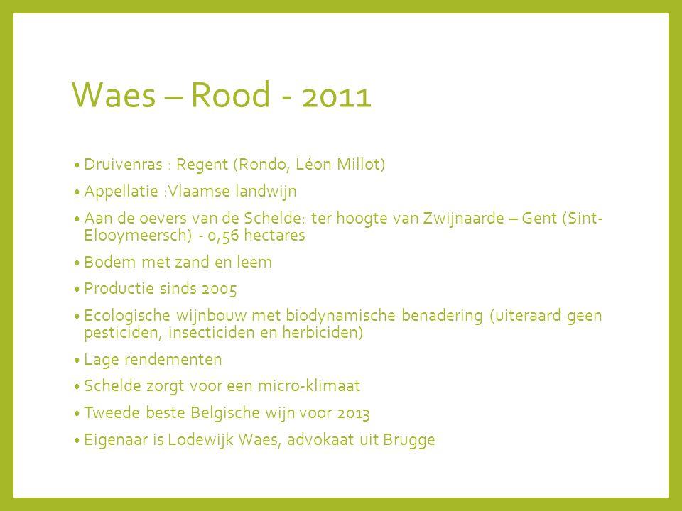 Waes – Rood - 2011 Druivenras : Regent (Rondo, Léon Millot) Appellatie :Vlaamse landwijn Aan de oevers van de Schelde: ter hoogte van Zwijnaarde – Gent (Sint- Elooymeersch) - 0,56 hectares Bodem met zand en leem Productie sinds 2005 Ecologische wijnbouw met biodynamische benadering (uiteraard geen pesticiden, insecticiden en herbiciden) Lage rendementen Schelde zorgt voor een micro-klimaat Tweede beste Belgische wijn voor 2013 Eigenaar is Lodewijk Waes, advokaat uit Brugge