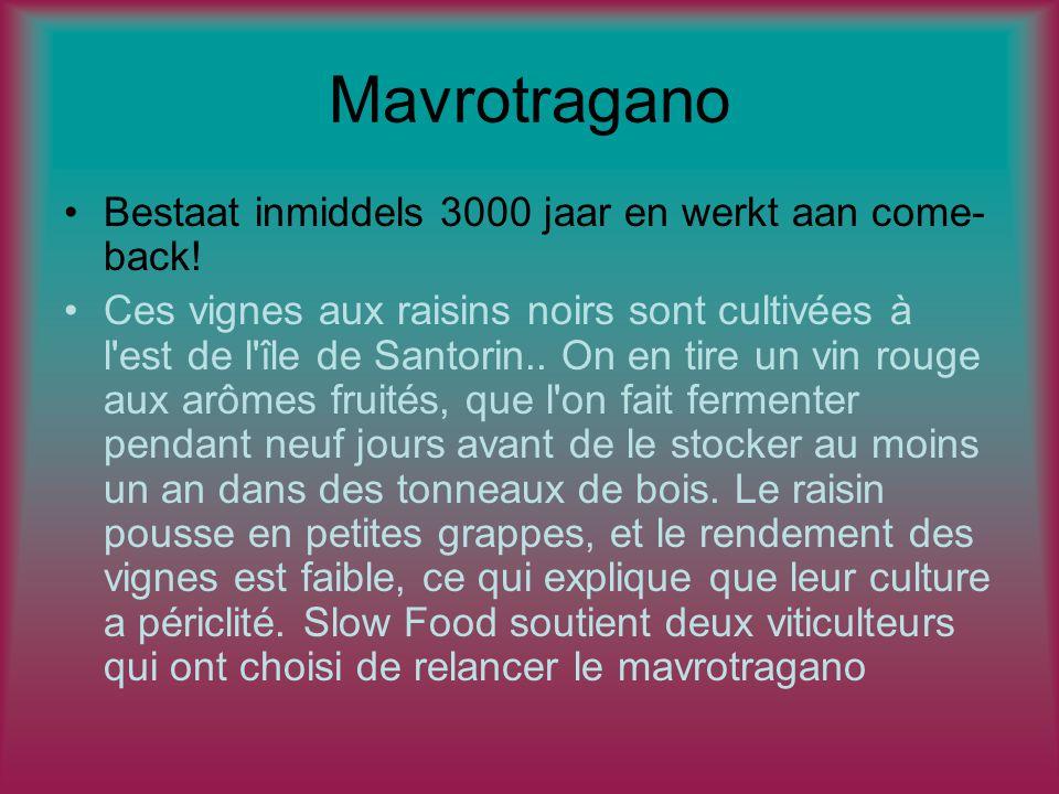 Mavrotragano Bestaat inmiddels 3000 jaar en werkt aan come- back.