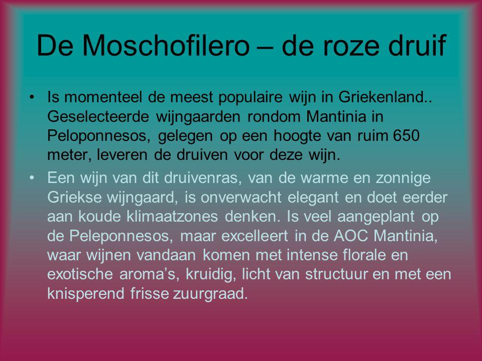 De Moschofilero – de roze druif Is momenteel de meest populaire wijn in Griekenland..