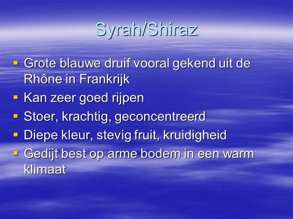 Syrah/Shiraz  Grote blauwe druif vooral gekend uit de Rhône in Frankrijk  Kan zeer goed rijpen  Stoer, krachtig, geconcentreerd  Diepe kleur, stevig fruit, kruidigheid  Gedijt best op arme bodem in een warm klimaat