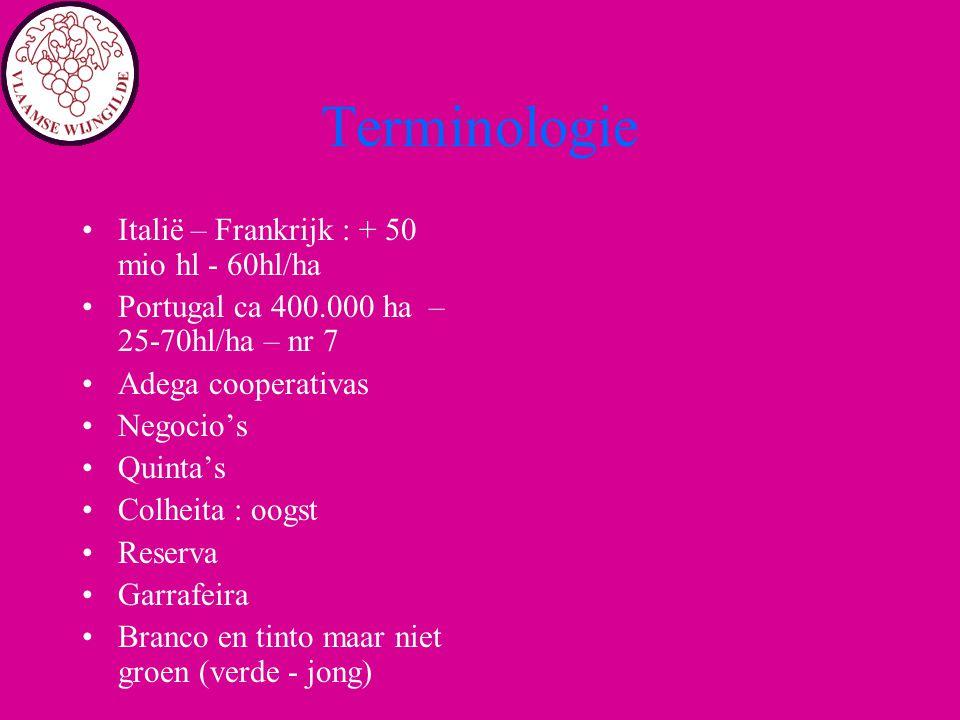 Terminologie Italië – Frankrijk : + 50 mio hl - 60hl/ha Portugal ca 400.000 ha – 25-70hl/ha – nr 7 Adega cooperativas Negocio's Quinta's Colheita : oo