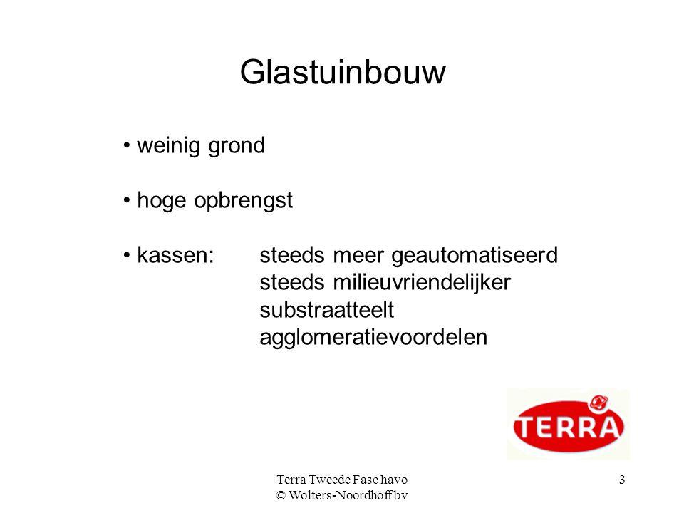 Terra Tweede Fase havo © Wolters-Noordhoff bv 3 Glastuinbouw weinig grond hoge opbrengst kassen:steeds meer geautomatiseerd steeds milieuvriendelijker