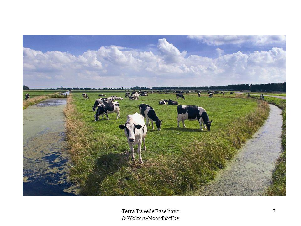 Terra Tweede Fase havo © Wolters-Noordhoff bv 7