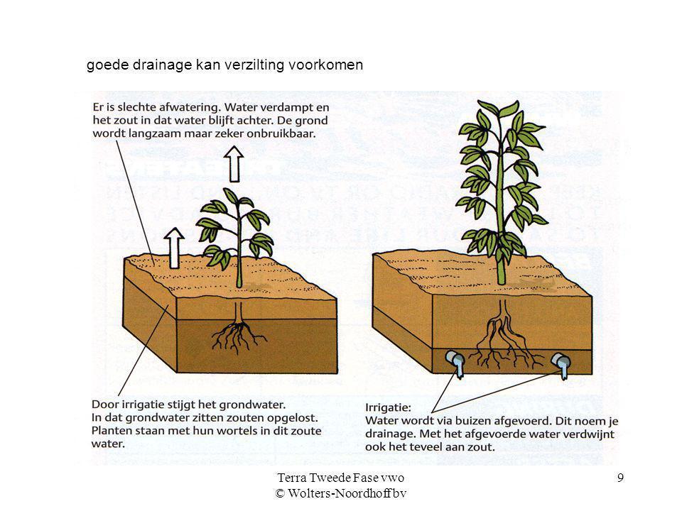 Terra Tweede Fase vwo © Wolters-Noordhoff bv 9 goede drainage kan verzilting voorkomen
