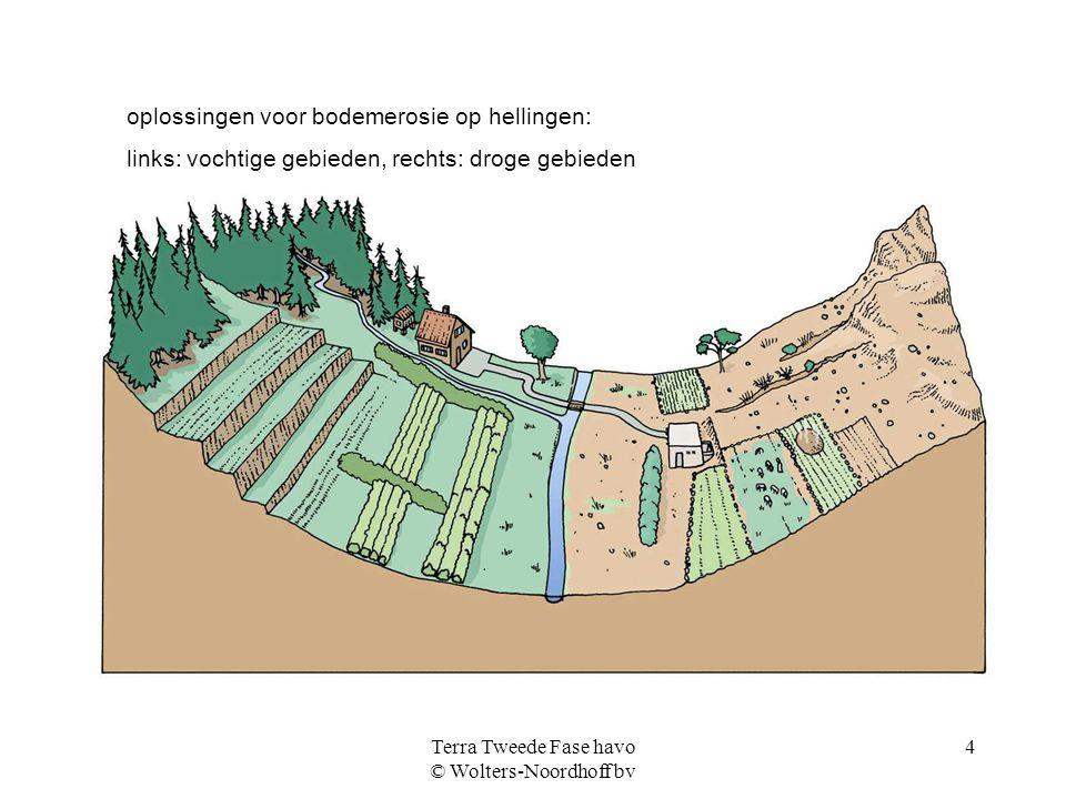 Terra Tweede Fase havo © Wolters-Noordhoff bv 4 oplossingen voor bodemerosie op hellingen: links: vochtige gebieden, rechts: droge gebieden