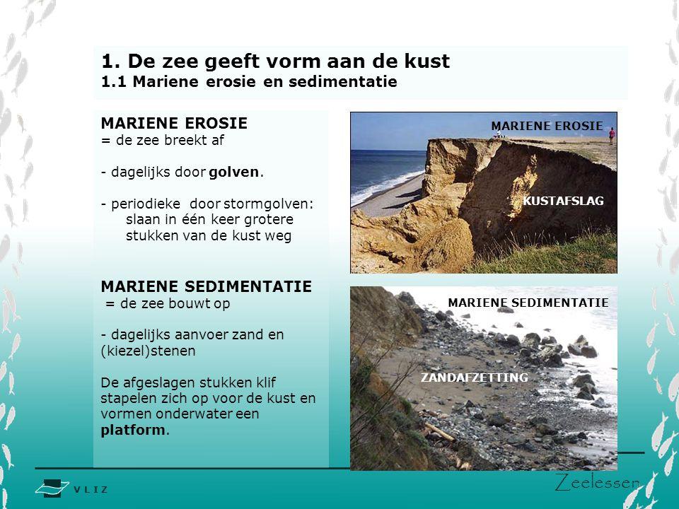 V L I Z www.vliz.be Zeelessen 1. De zee geeft vorm aan de kust 1.1 Mariene erosie en sedimentatie MARIENE EROSIE = de zee breekt af - dagelijks door g