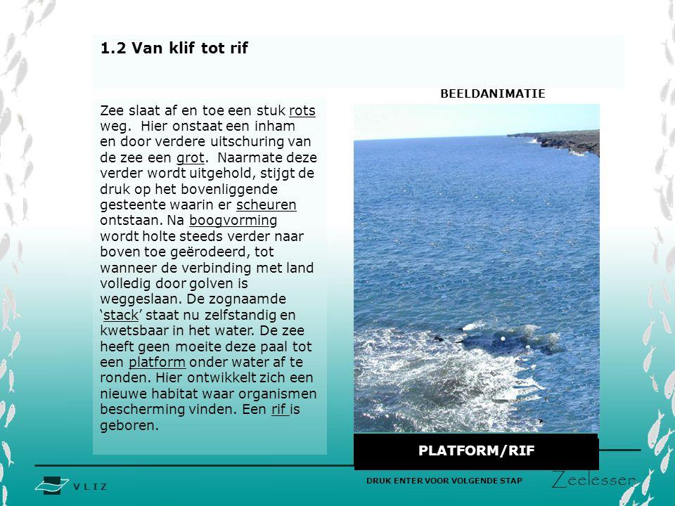 V L I Z www.vliz.be Zeelessen 1.2 Van klif tot rif AFBRAAK STUK ROTSGROTBOOGPILAARLOSSTAANDAFGESTOMPT PLATFORM/RIF DRUK ENTER VOOR VOLGENDE STAP Zee s