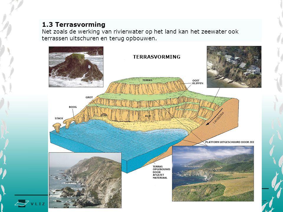V L I Z www.vliz.be Zeelessen 1.3 Terrasvorming Net zoals de werking van rivierwater op het land kan het zeewater ook terrassen uitschuren en terug op