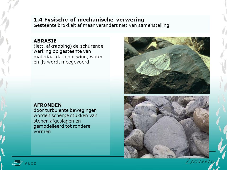 V L I Z www.vliz.be Zeelessen 1.4 Fysische of mechanische verwering Gesteente brokkelt af maar verandert niet van samenstelling ABRASIE (lett. afkrabb