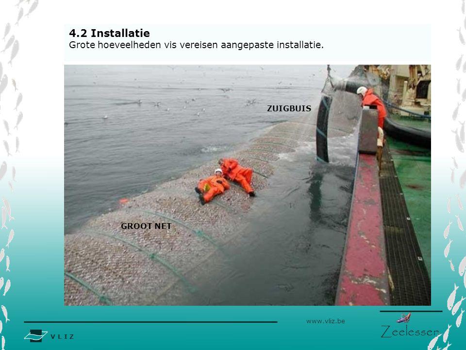 V L I Z www.vliz.be Zeelessen 4.2 Installatie Grote hoeveelheden vis vereisen aangepaste installatie. ZUIGBUIS GROOT NET