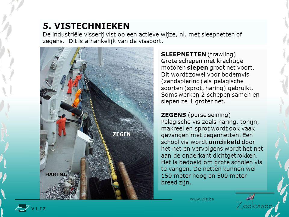 V L I Z www.vliz.be Zeelessen 5. VISTECHNIEKEN De industriële visserij vist op een actieve wijze, nl. met sleepnetten of zegens. Dit is afhankelijk va