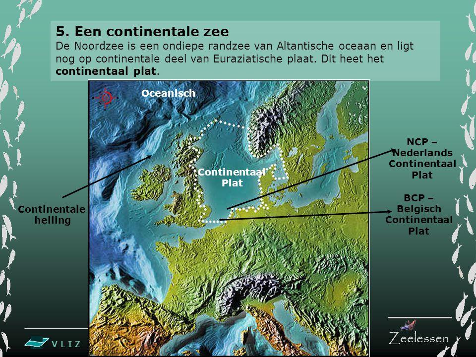 V L I Z www.vliz.be Zeelessen BCP – Belgisch Continentaal Plat Continentaal Plat Oceanisch Continentale helling 5. Een continentale zee De Noordzee is