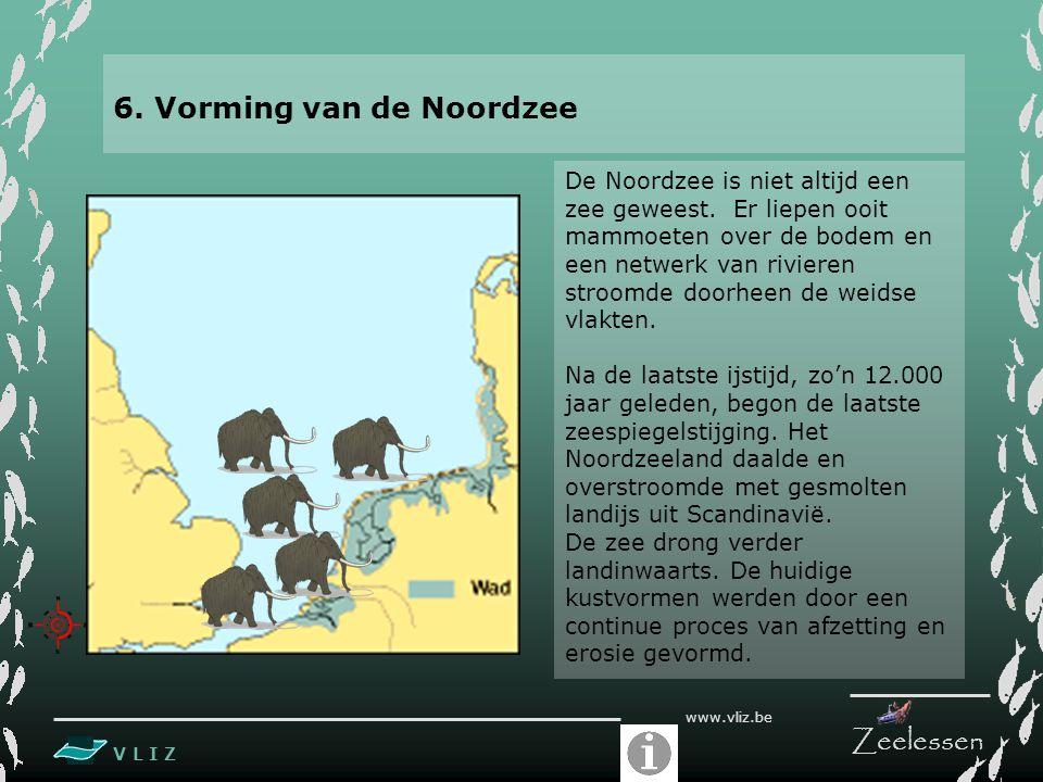 V L I Z www.vliz.be Zeelessen 6. Vorming van de Noordzee De Noordzee is niet altijd een zee geweest. Er liepen ooit mammoeten over de bodem en een net