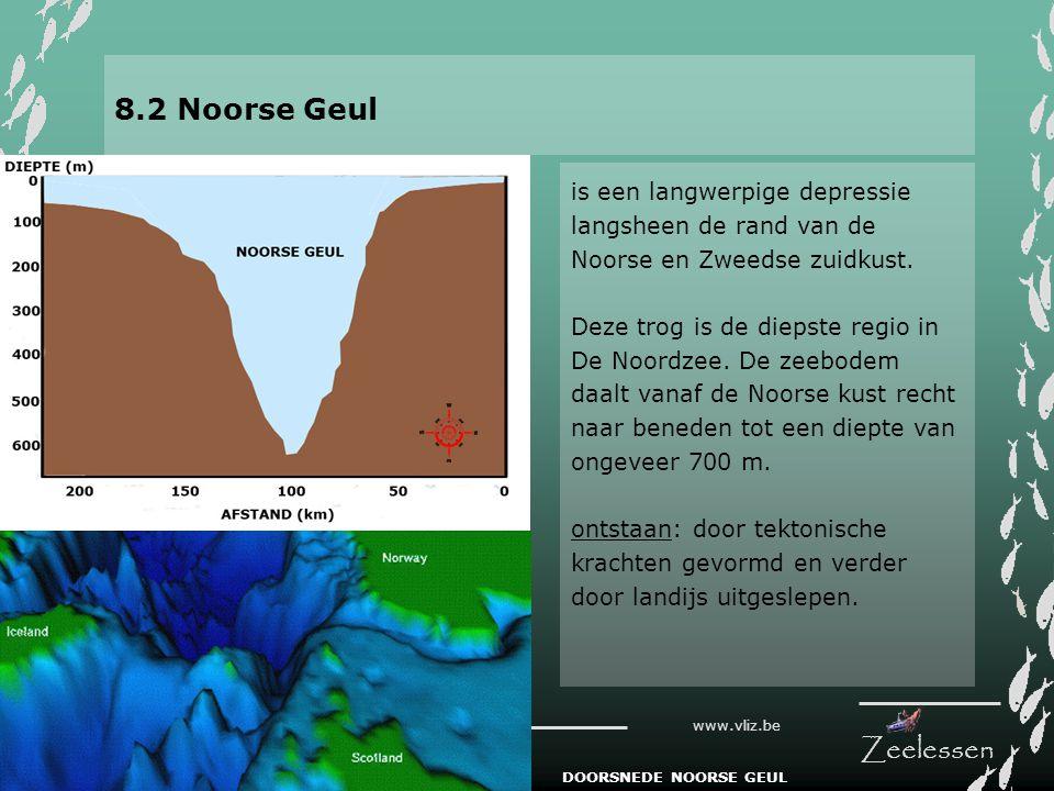 V L I Z www.vliz.be Zeelessen 8.2 Noorse Geul is een langwerpige depressie langsheen de rand van de Noorse en Zweedse zuidkust. Deze trog is de diepst
