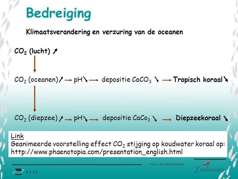 V L I Z www.vliz.be/educatie Zeelessen Klimaatsverandering en verzuring van de oceanen CO 2 (lucht) CO 2 (oceanen) pH depositie CaCO 3 Tropisch koraal