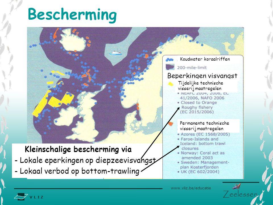 V L I Z www.vliz.be/educatie Zeelessen Bescherming Beperkingen visvangst Tijdelijke technische visserij maatregelen Permanente technische visserij maa