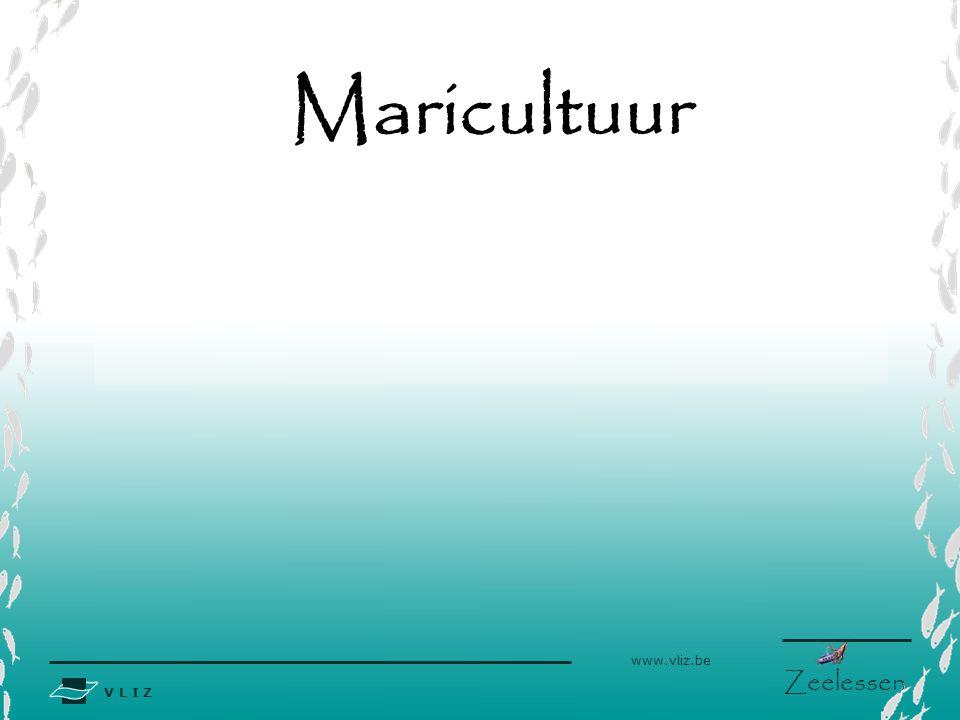 V L I Z www.vliz.be Zeelessen Maricultuur