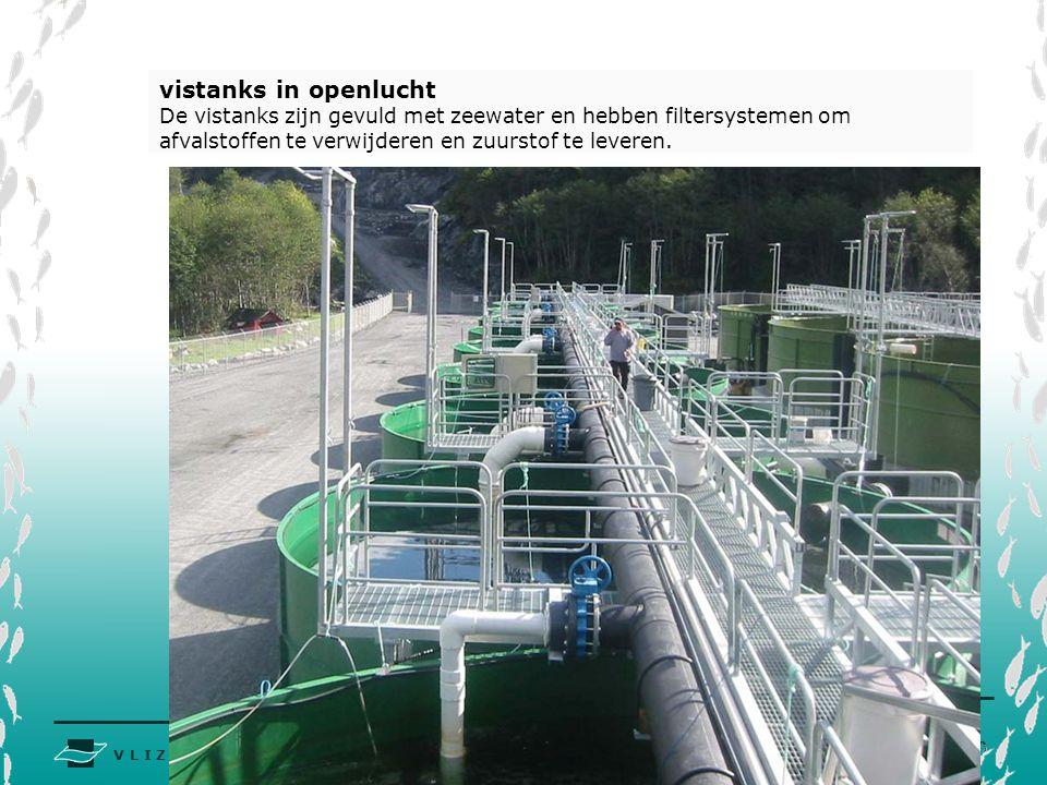 V L I Z www.vliz.be Zeelessen vistanks in openlucht De vistanks zijn gevuld met zeewater en hebben filtersystemen om afvalstoffen te verwijderen en zuurstof te leveren.