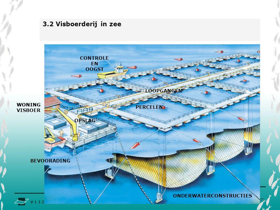 V L I Z www.vliz.be Zeelessen 3.2 Visboerderij in zee WONING VISBOER BEVOORADING OPSLAG PERCELEN WONING LOOPGANGEN ONDERWATERCONSTRUCTIES CONTROLE EN OOGST