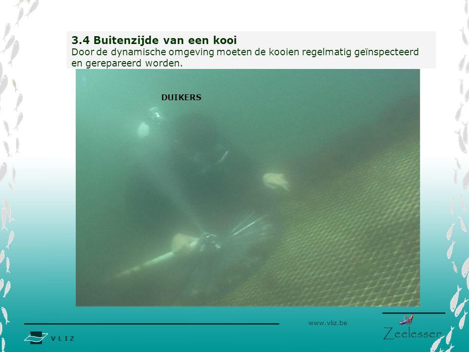 V L I Z www.vliz.be Zeelessen 3.4 Buitenzijde van een kooi Door de dynamische omgeving moeten de kooien regelmatig geïnspecteerd en gerepareerd worden.