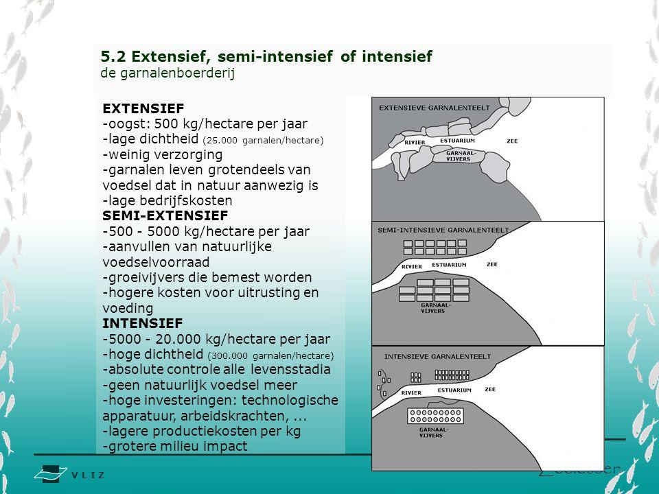 V L I Z www.vliz.be Zeelessen 5.2 Extensief, semi-intensief of intensief de garnalenboerderij EXTENSIEF -oogst: 500 kg/hectare per jaar -lage dichtheid (25.000 garnalen/hectare) -weinig verzorging -garnalen leven grotendeels van voedsel dat in natuur aanwezig is -lage bedrijfskosten SEMI-EXTENSIEF -500 - 5000 kg/hectare per jaar -aanvullen van natuurlijke voedselvoorraad -groeivijvers die bemest worden -hogere kosten voor uitrusting en voeding INTENSIEF -5000 - 20.000 kg/hectare per jaar -hoge dichtheid (300.000 garnalen/hectare) -absolute controle alle levensstadia -geen natuurlijk voedsel meer -hoge investeringen: technologische apparatuur, arbeidskrachten,...