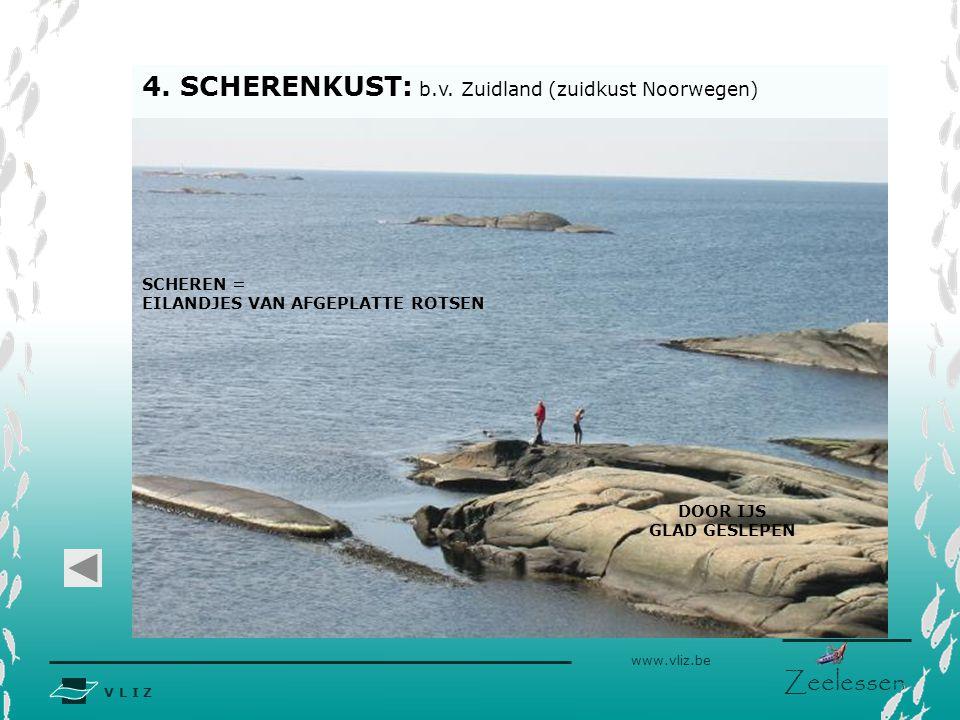 V L I Z www.vliz.be Zeelessen 4.SCHERENKUST: b.v.