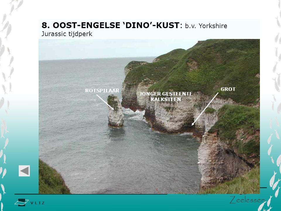 V L I Z www.vliz.be Zeelessen 8.OOST-ENGELSE 'DINO'-KUST: b.v.