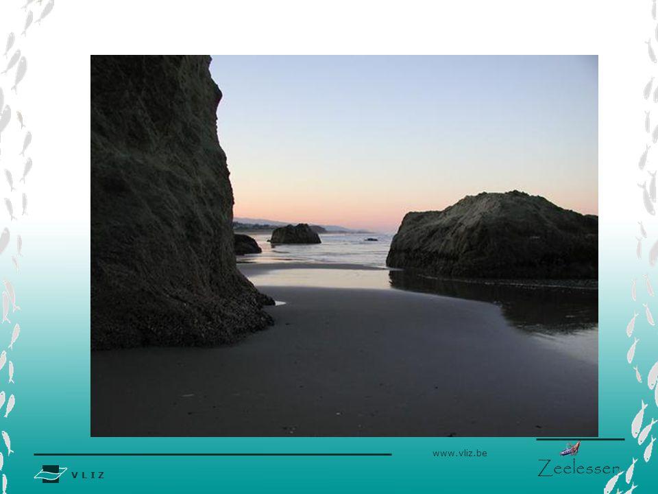 V L I Z www.vliz.be Zeelessen Inleiding De Noordzee kent een uiteenlopend aantal kustvormen.