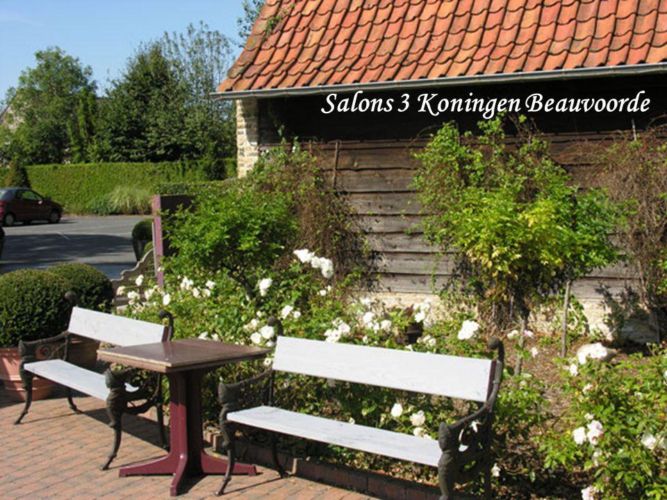 Salons 3 Koningen Beauvoorde