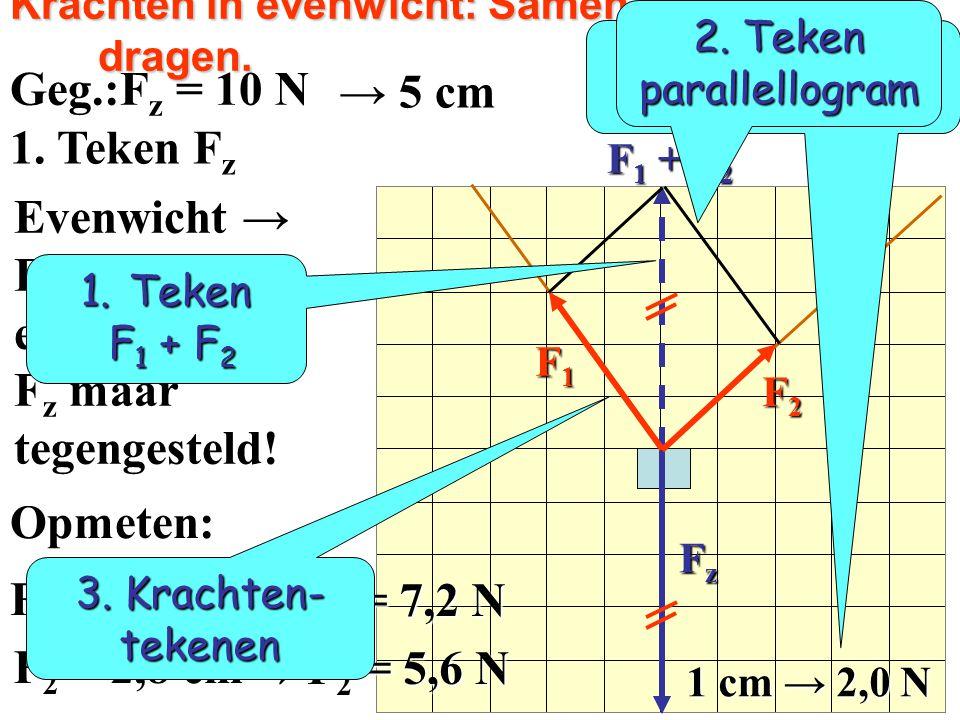 F1F1F1F1 F2F2F2F2 FzFzFzFz Samen een tas dragen. Geg.:F 1 = 7,2 N  F z = 10 N F z = 5,0 cm F 2 = 5,6 N F 2 = 5,6 N 4. Teken diagonaal Teken F 1 + F 2