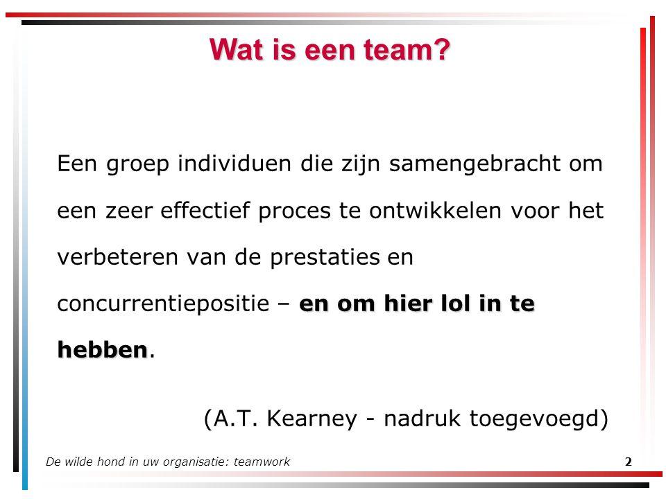 De wilde hond in uw organisatie: teamwork2 Wat is een team? en om hier lol in te hebben Een groep individuen die zijn samengebracht om een zeer effect