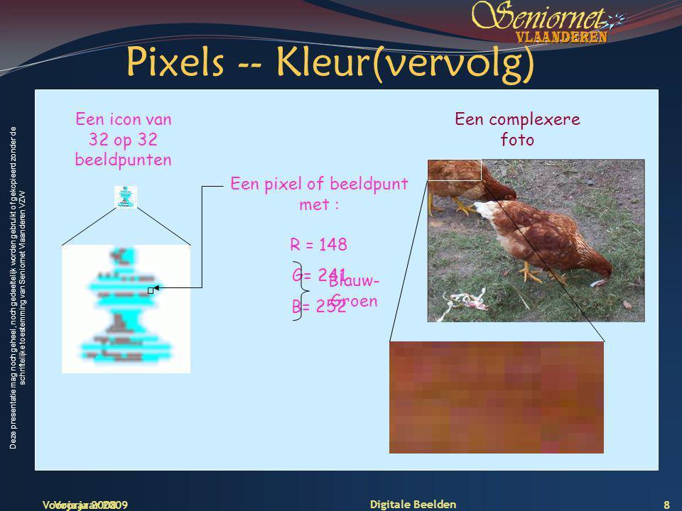 Deze presentatie mag noch geheel, noch gedeeltelijk worden gebruikt of gekopieerd zonder de schriftelijke toestemming van Seniornet Vlaanderen VZW Voorjaar 2009 Digitale Beelden Inzoomen toont de pixels… 9
