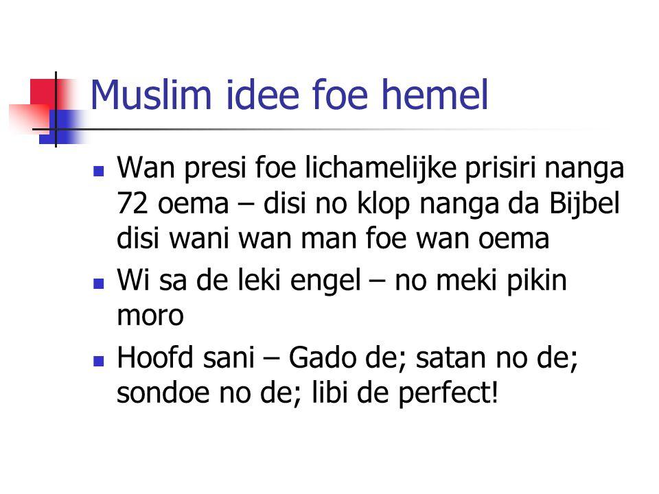 Muslim idee foe hemel Wan presi foe lichamelijke prisiri nanga 72 oema – disi no klop nanga da Bijbel disi wani wan man foe wan oema Wi sa de leki engel – no meki pikin moro Hoofd sani – Gado de; satan no de; sondoe no de; libi de perfect!