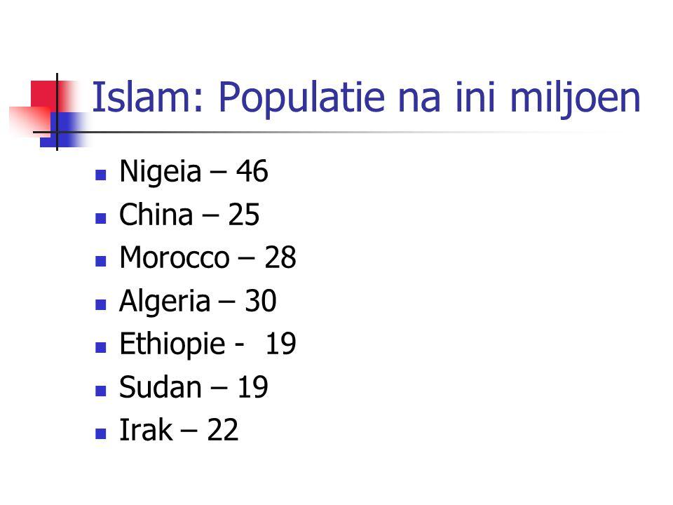 Islam: Populatie na ini miljoen Nigeia – 46 China – 25 Morocco – 28 Algeria – 30 Ethiopie - 19 Sudan – 19 Irak – 22