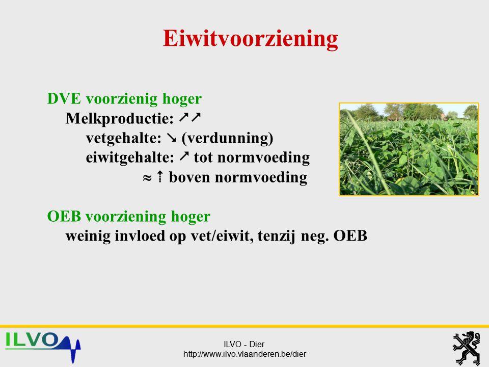 ILVO - Dier http://www.ilvo.vlaanderen.be/dier ILVO - Dier http://www.ilvo.vlaanderen.be/dier Eiwitvoorziening DVE voorzienig hoger Melkproductie: 