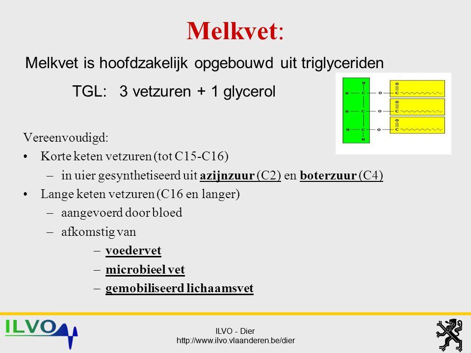 ILVO - Dier http://www.ilvo.vlaanderen.be/dier ILVO - Dier http://www.ilvo.vlaanderen.be/dier Melkvet is hoofdzakelijk opgebouwd uit triglyceriden TGL