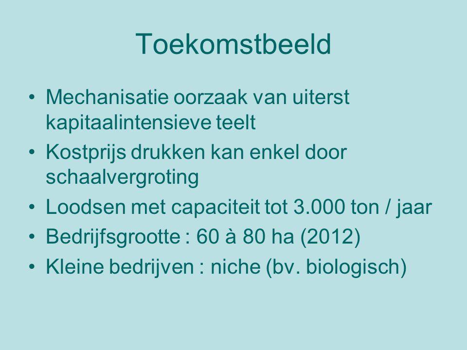 Toekomstbeeld Mechanisatie oorzaak van uiterst kapitaalintensieve teelt Kostprijs drukken kan enkel door schaalvergroting Loodsen met capaciteit tot 3.000 ton / jaar Bedrijfsgrootte : 60 à 80 ha (2012) Kleine bedrijven : niche (bv.