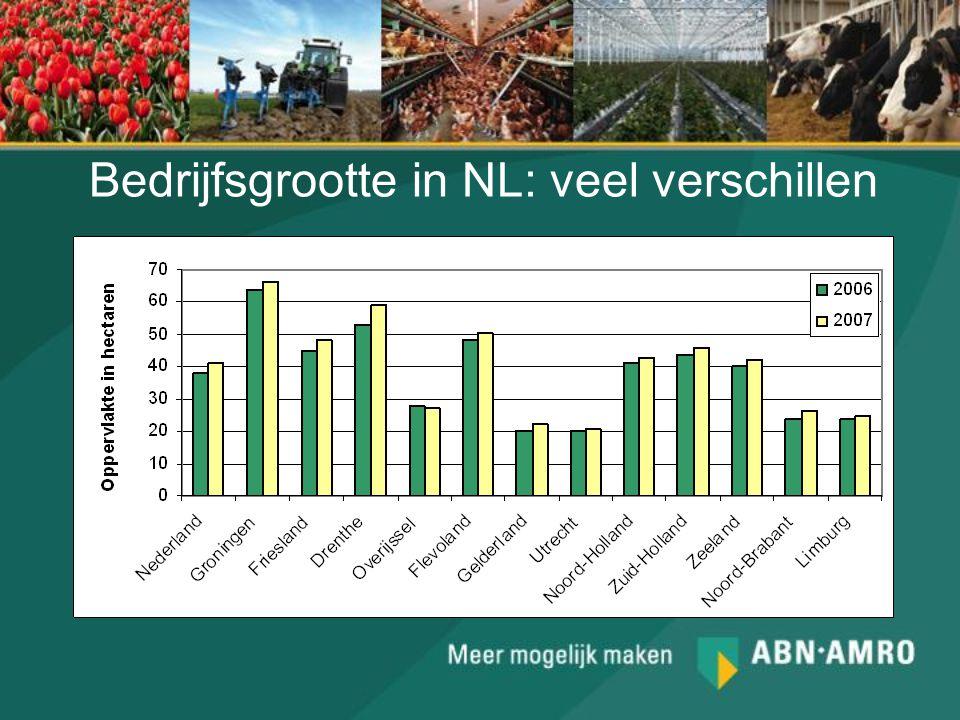 Bedrijfsgrootte in NL: veel verschillen