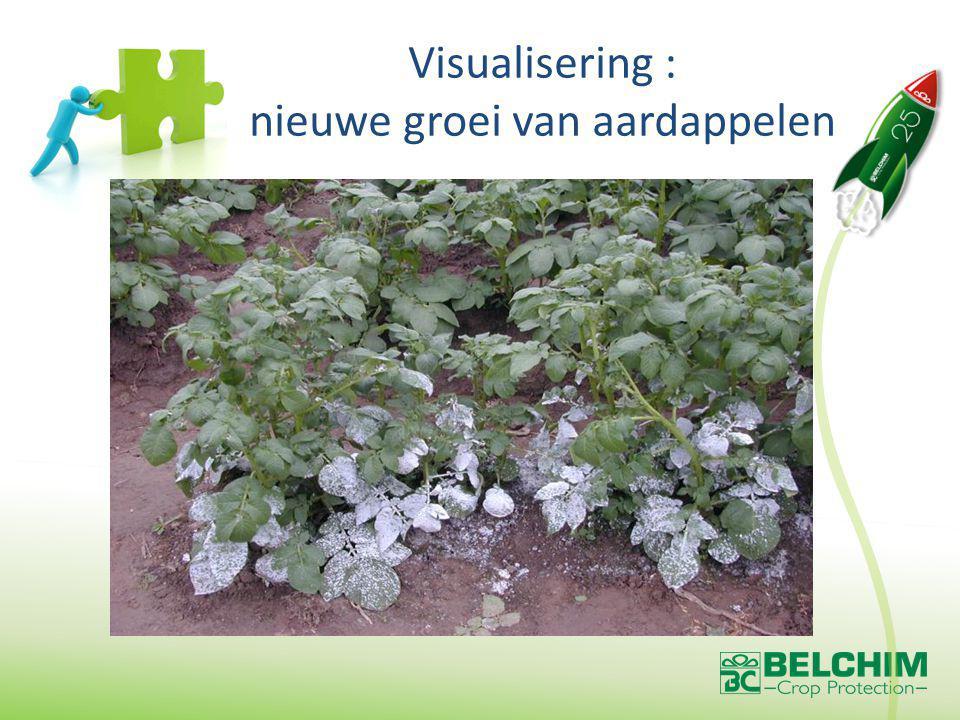Visualisering : nieuwe groei van aardappelen