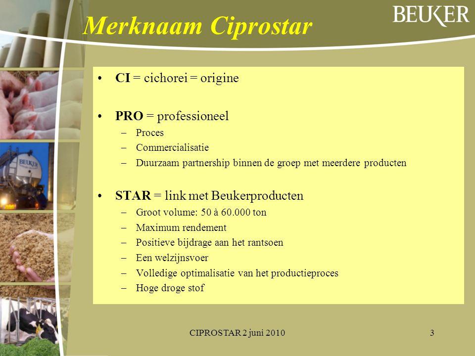 Merknaam Ciprostar CI = cichorei = origine PRO = professioneel –Proces –Commercialisatie –Duurzaam partnership binnen de groep met meerdere producten