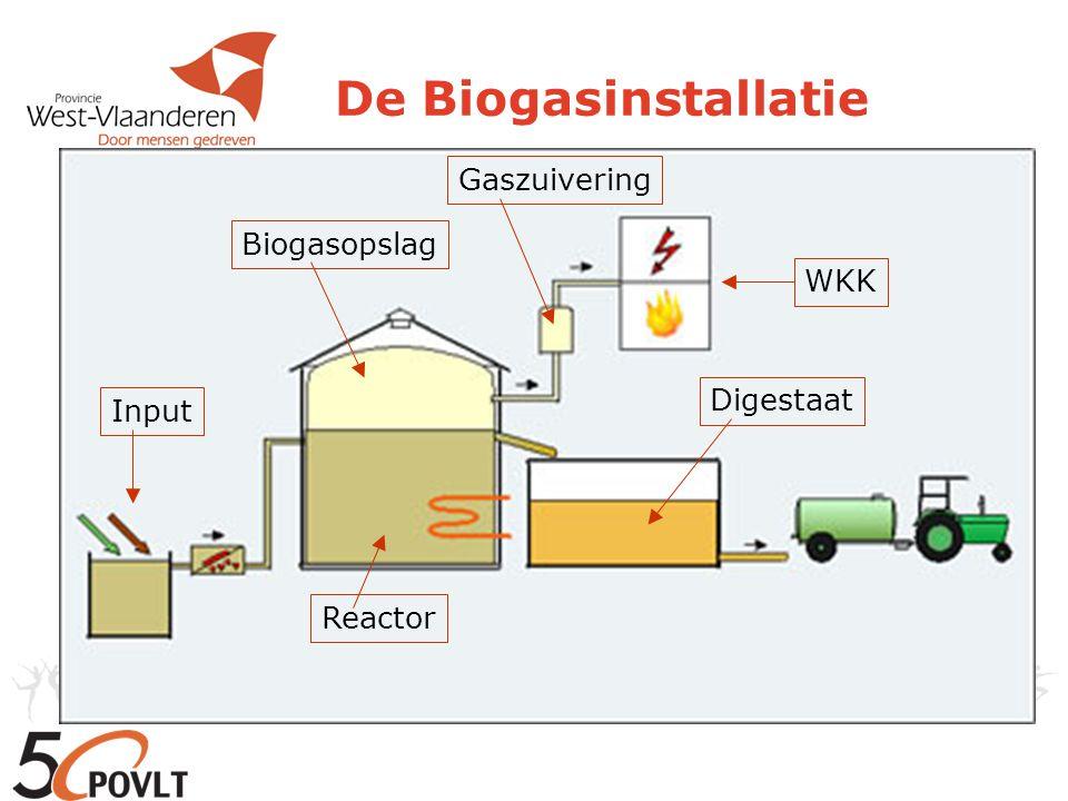 De Biogasinstallatie Reactor Input Biogasopslag Gaszuivering WKK Digestaat